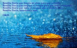 lluvia O&M