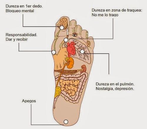 Los pinchazos al dolor vivo a la osteocondrosis sheynogo del departamento
