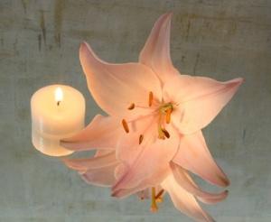 Lilie mit Kerze