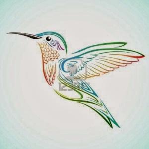 9155598-colibri-colorido