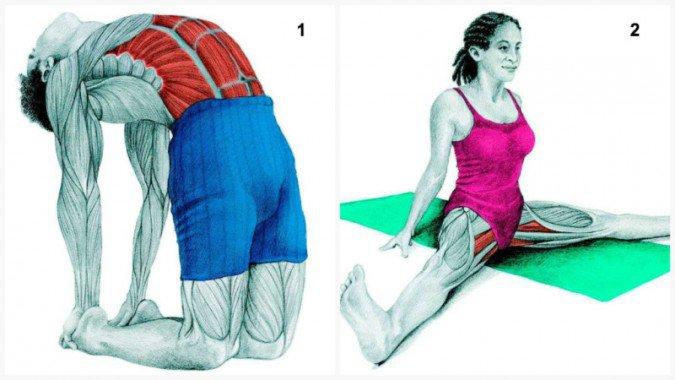 pose-de-camello-estiramientos-musculares-675x380